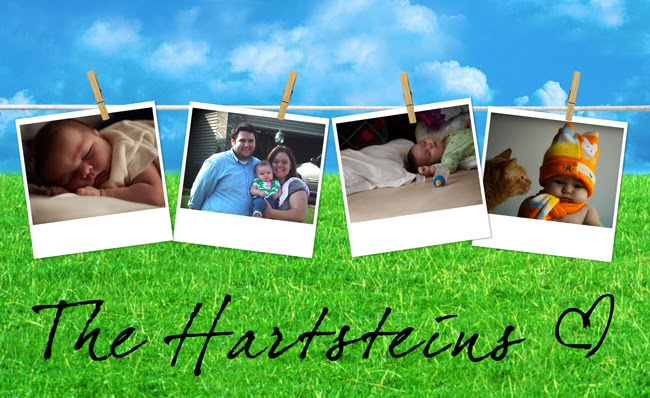 the hartsteins
