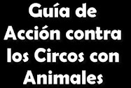 GUIA DE ACCION