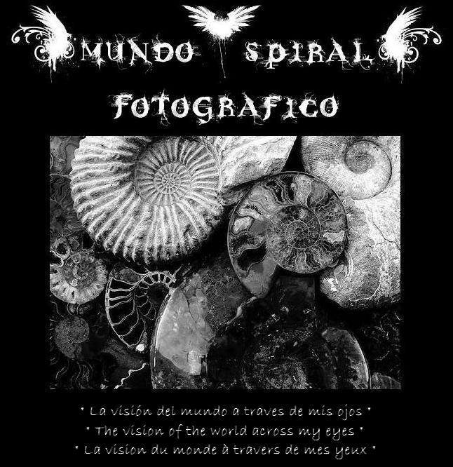 Mundo---Spiral---fotografico