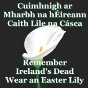 Honour Irelands Patriot Dead