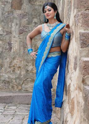 actress vimala raman in saree photos+123actressphotosgallery.com