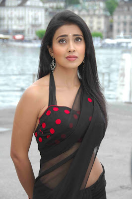 tollywood actress shreya in hot black saree photos