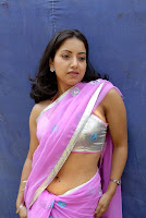 Tollywood Actress Preethi Mehra Hot Saree Navel Show