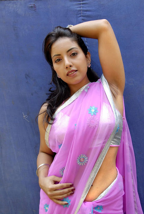 tollywood preethi mehra saree high quality actress pics