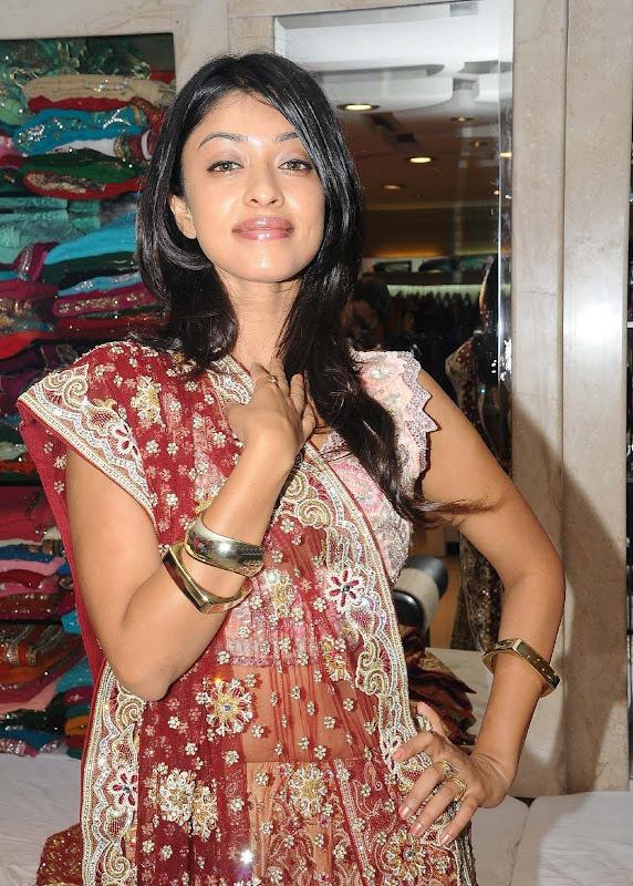 Actress Payal Gosh Hot Stills sexy stills
