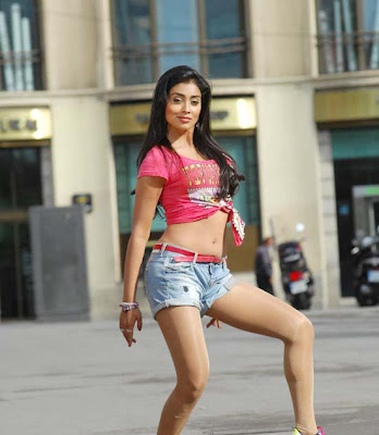 Actress Shriya Sharan Hot Navel show Photos