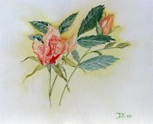 Oranje gele roos (te koop)