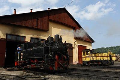 Vara aceasta cu mocanita pe Vaser au fost mai multi turisti decat se gandea cineva ca vor veni. Pentru prima data de cand se fac trenurile turistice cu locomotive cu abur, mocanita a urcat pe vale, pana la Paltin, in duminica urmatoare sarbatorii de Sf. Maria.