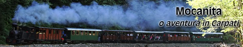 Mocanita | Trenul forestier cu abur pe linie ingusta