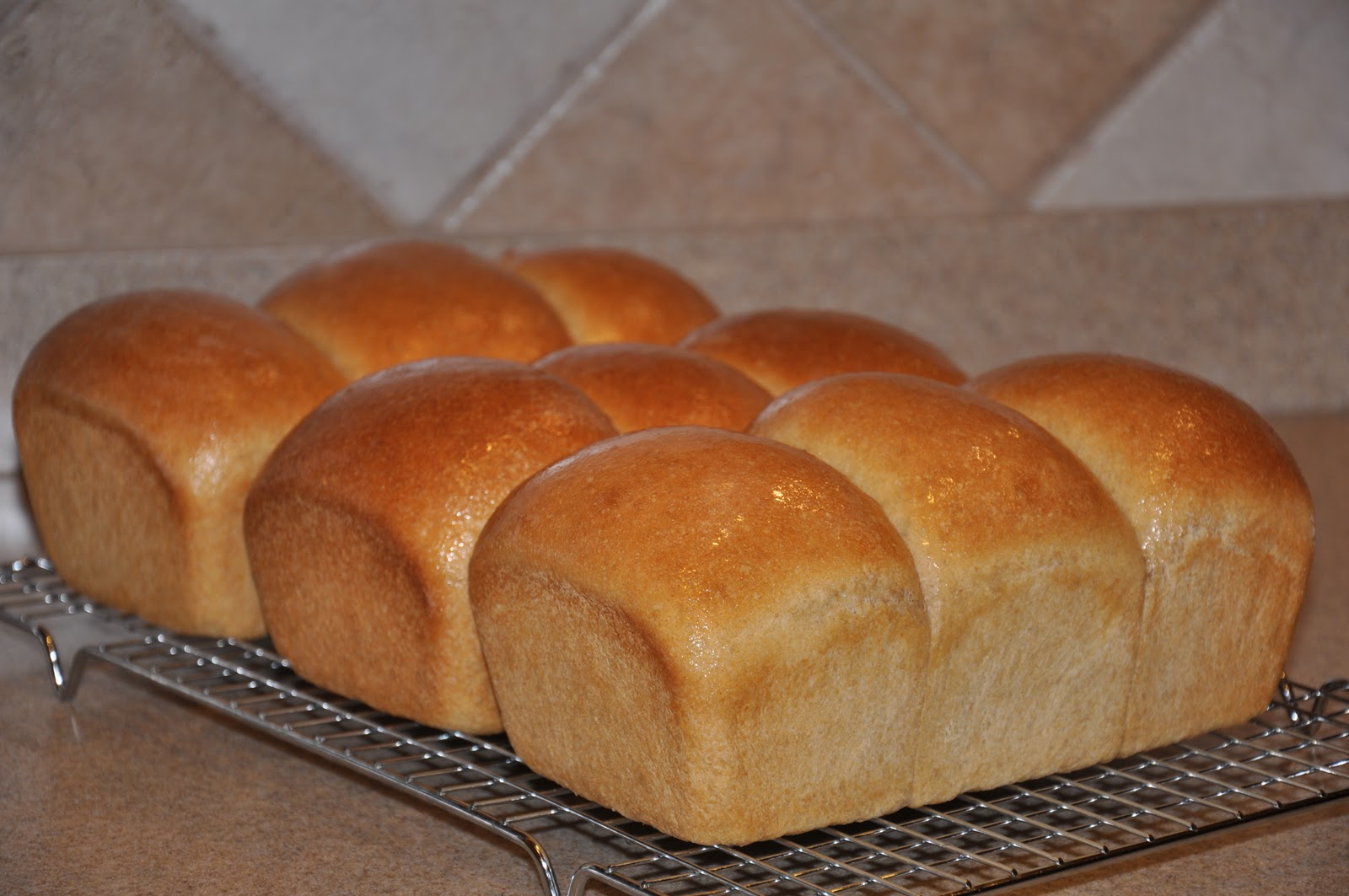 this oh so basic whole wheat bread can be made in any brand of bread ...