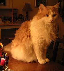 Blog mascot Leo