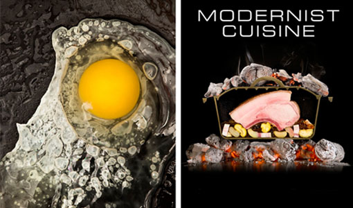 for Modernist cuisine ou on food and cooking