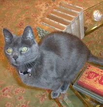 Our Little Russian Blue, Katerina Kiev