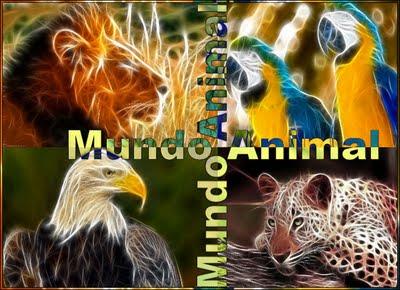 VISITA MUNDO ANIMAL