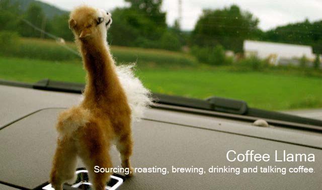 Coffee Llama