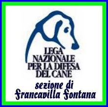 LNDC SEZ FRANCAVILLA FONTANA