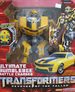 TransFormerS - MoRe ThaN MeeTs tHe eYe