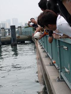 scattering sand mandala into Sumida river tokyo