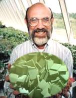 Soylent Green is People!