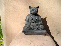 Buddha cat in hollydale on a ledge of peace and solitude