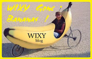 wxyz gone bananas car