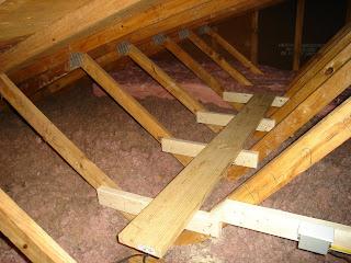 attic cat machine