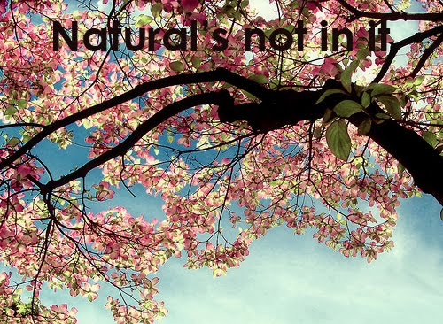 natural's not in it