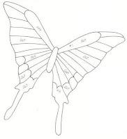 бабочка из бутылки схема