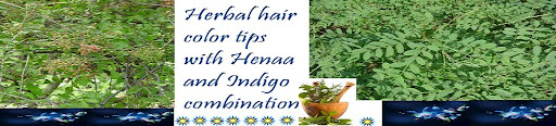 HERBAL HAIR COLOUR TIPS