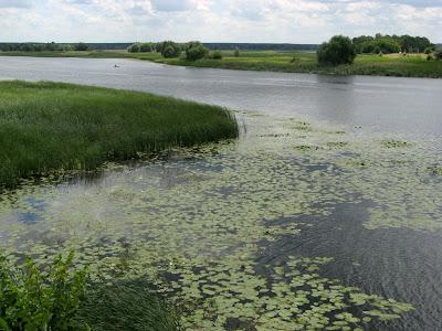 Салтовское водохранилище