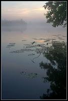 Утро на Ворскле (HDR)
