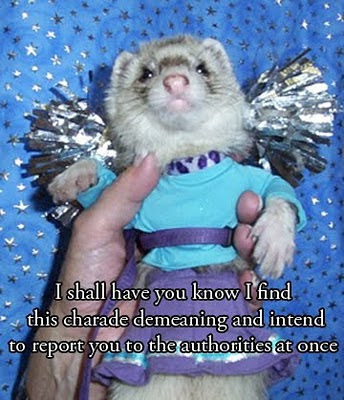 "photo of a ferret dressed in a costume, with the words ""I shall have you know I find this charade demeaning and intend to report you to the authorities at once"""