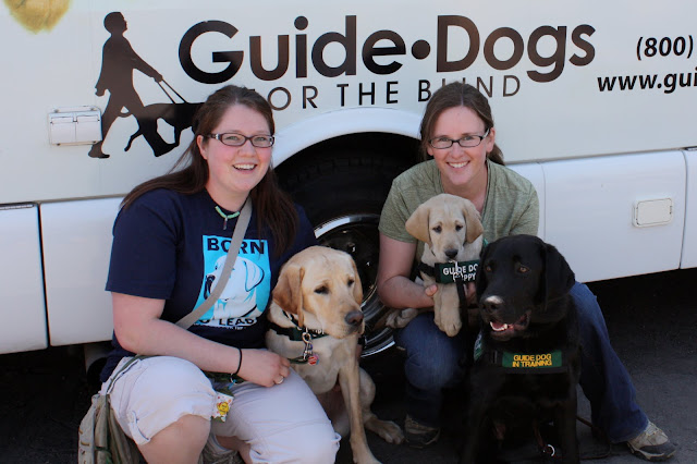 Megan, Paris, Becky, Rafferty and I all sit in front of the puppy truck under the words Guide Dogs