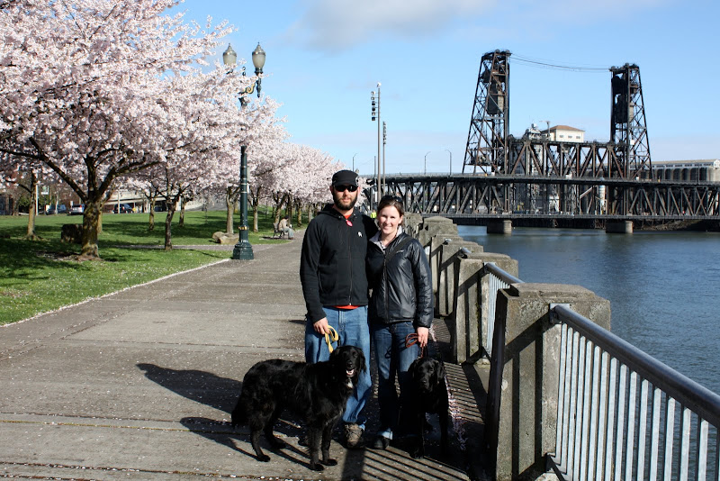Tom and I stand next to the Columbia river.  There are pink blossomed trees on our right and a large black bridge over the river on our left.  Rafferty and Hugo stand at our feet