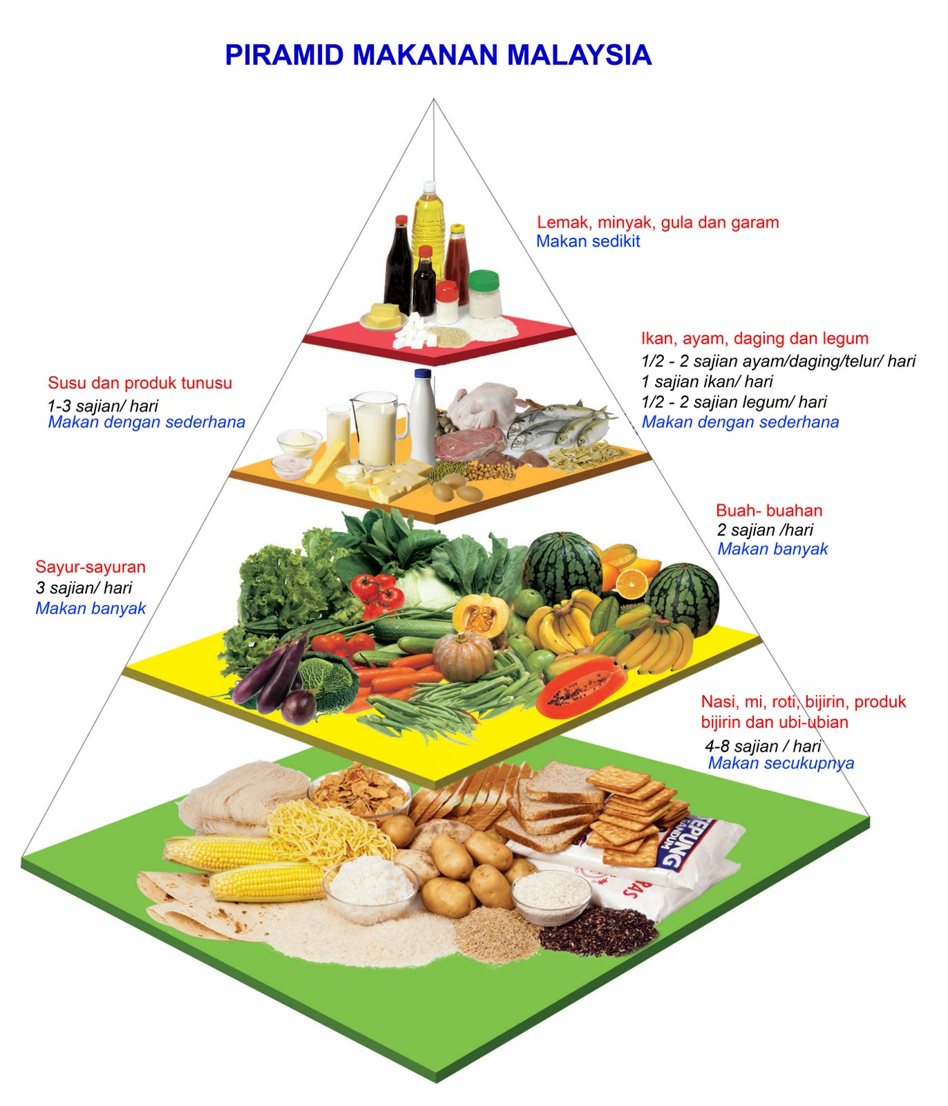 makanan seimbang merupakan makanan yang harus dimakan untuk memastikan ...