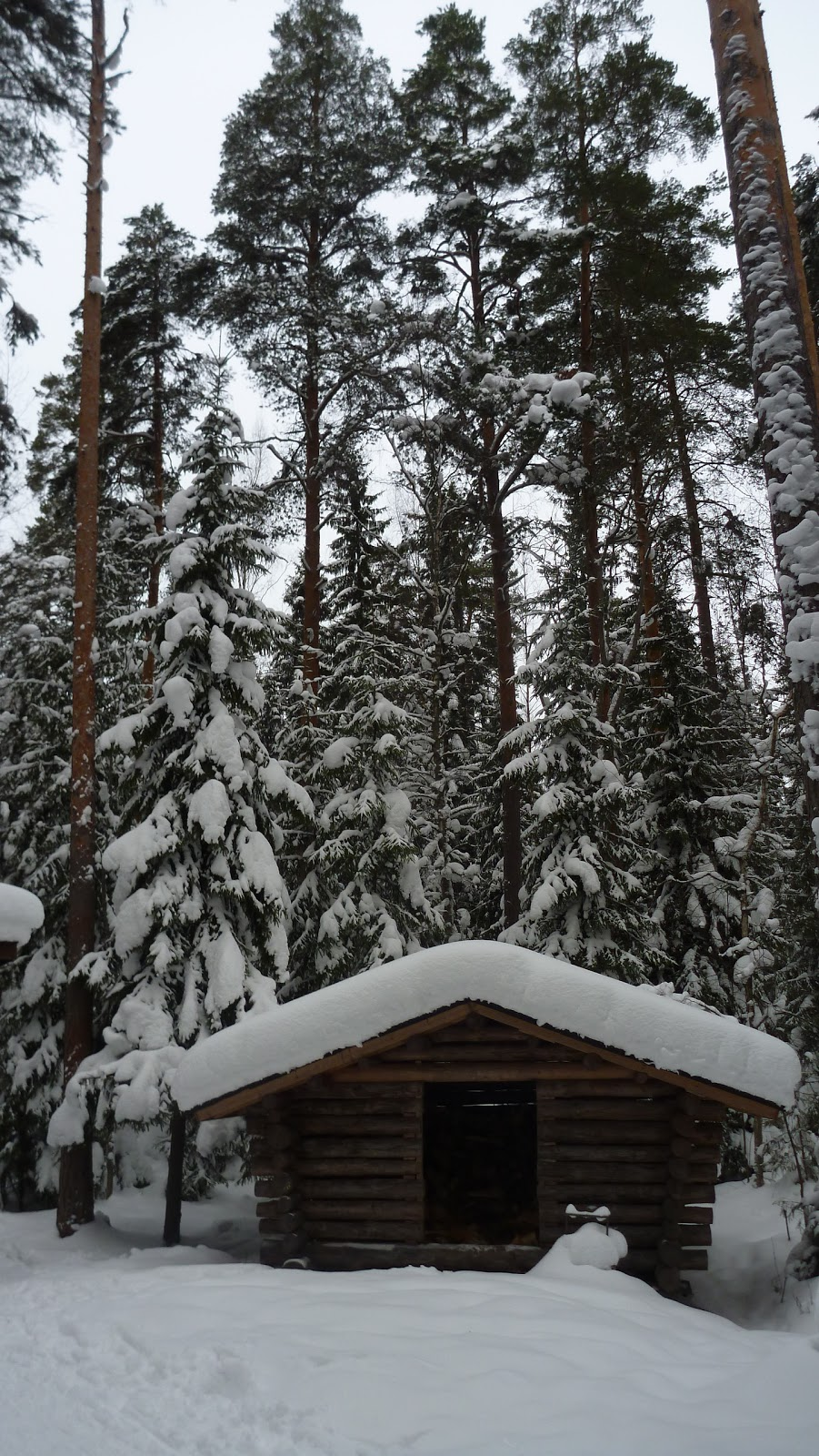 il dolce far niente snowshoeing in oittaa espoo finland. Black Bedroom Furniture Sets. Home Design Ideas