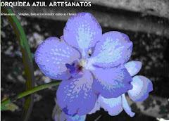 ORQUÍDEA AZUL ARTESANATOS