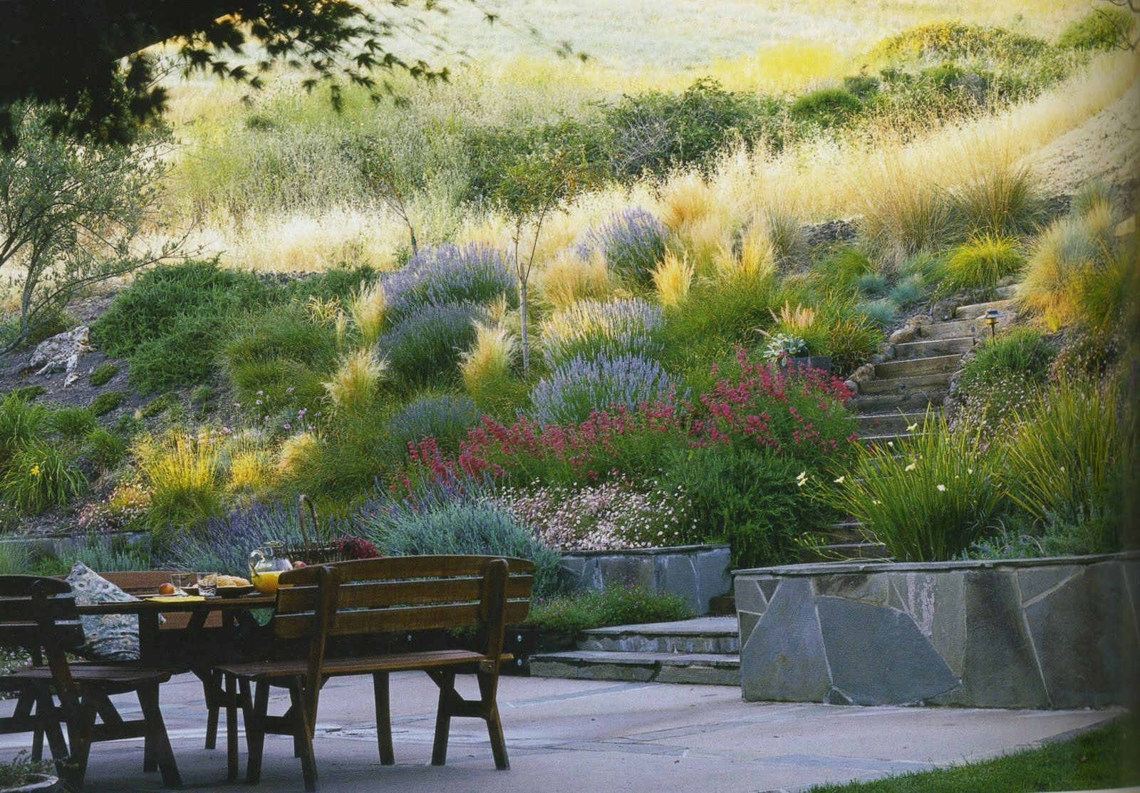 Gardens ideas hillside landscapes hillside gardens - Ideas for hillside landscape ...
