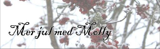 Mer jul med Molly