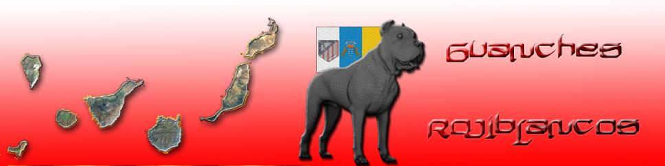 Peña Guanches Rojiblancos