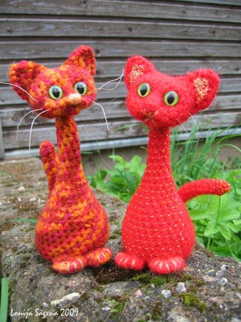 tamborēts kaķis,garkakla tupkaķis,lofonsa