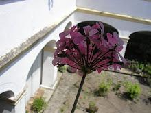 Convento de Cairu - BA