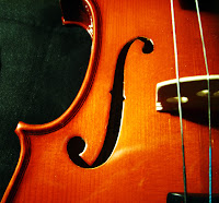The beautiful curves of the violin