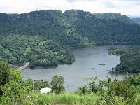 Greenery of Dos Bocas, Utuado
