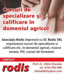 Cursuri de specializare, calificare