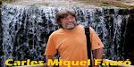 CARLES MIQUEL FAURÓ