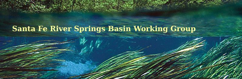 Santa Fe River Springs Basin Working Group