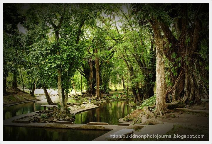 Bukidnon Photo Journal Matin Ao Spring In Bangcud