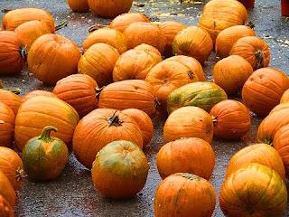 Halloween Pumpkin Festival Wallpaper