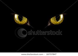 Dark Halloween Pictures